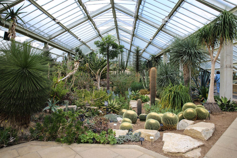 !Princess of Wales Conservatory - Kew Gardens, Londyn